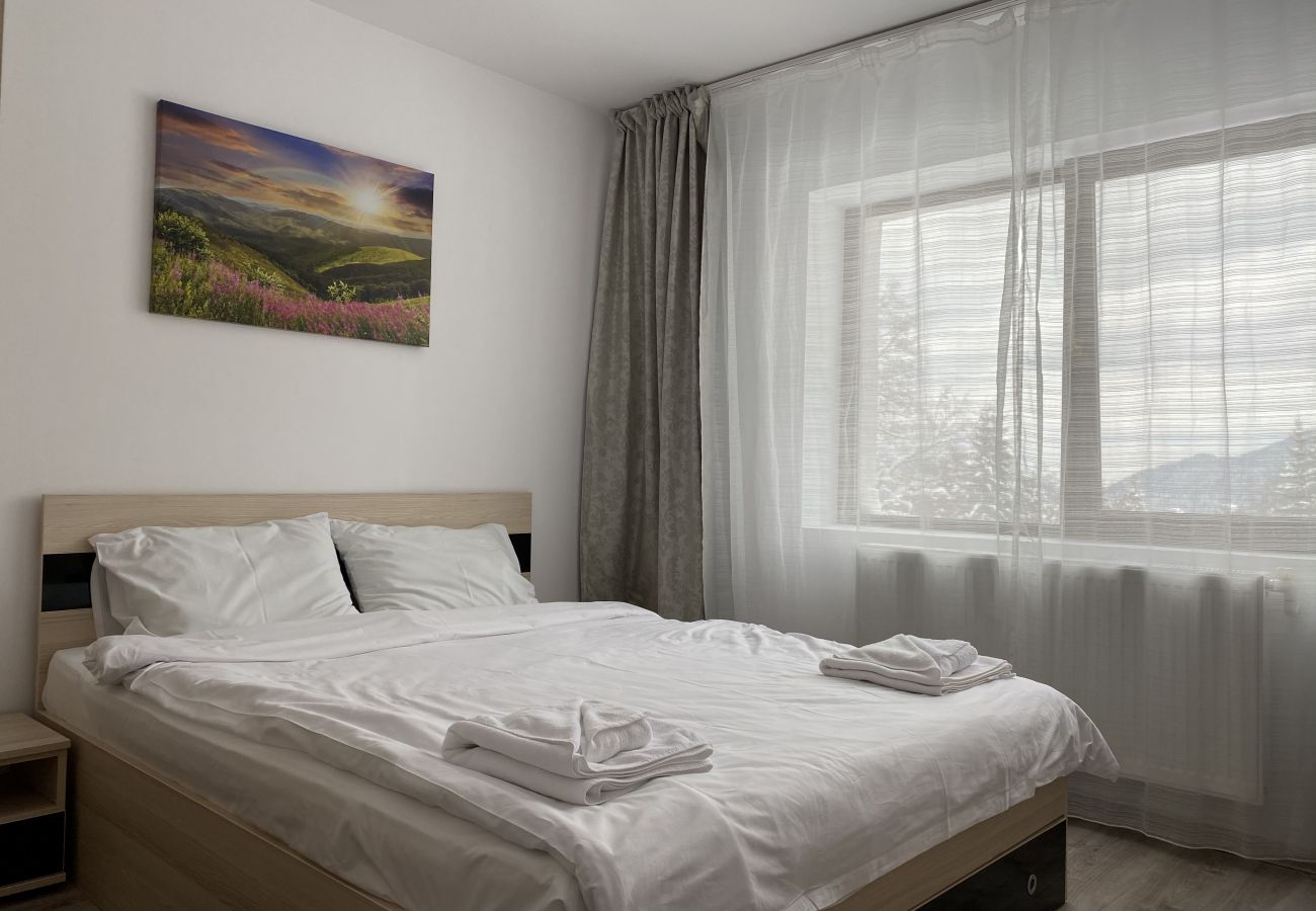 Apartment in Predeal - Bright Apartment Montain View with parking in Predeal