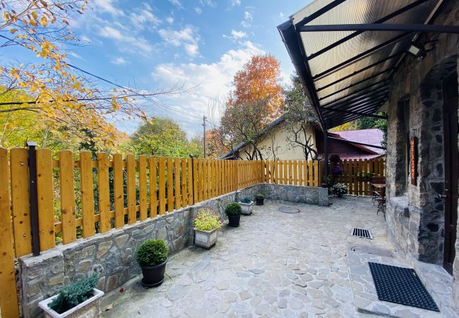 in Sinaia - Apartment Carol private yard with barbeque and parking