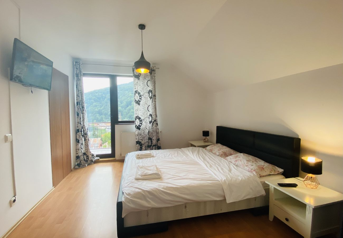 Apartment in Sinaia -  Mountain View Penthouse in Sinaia
