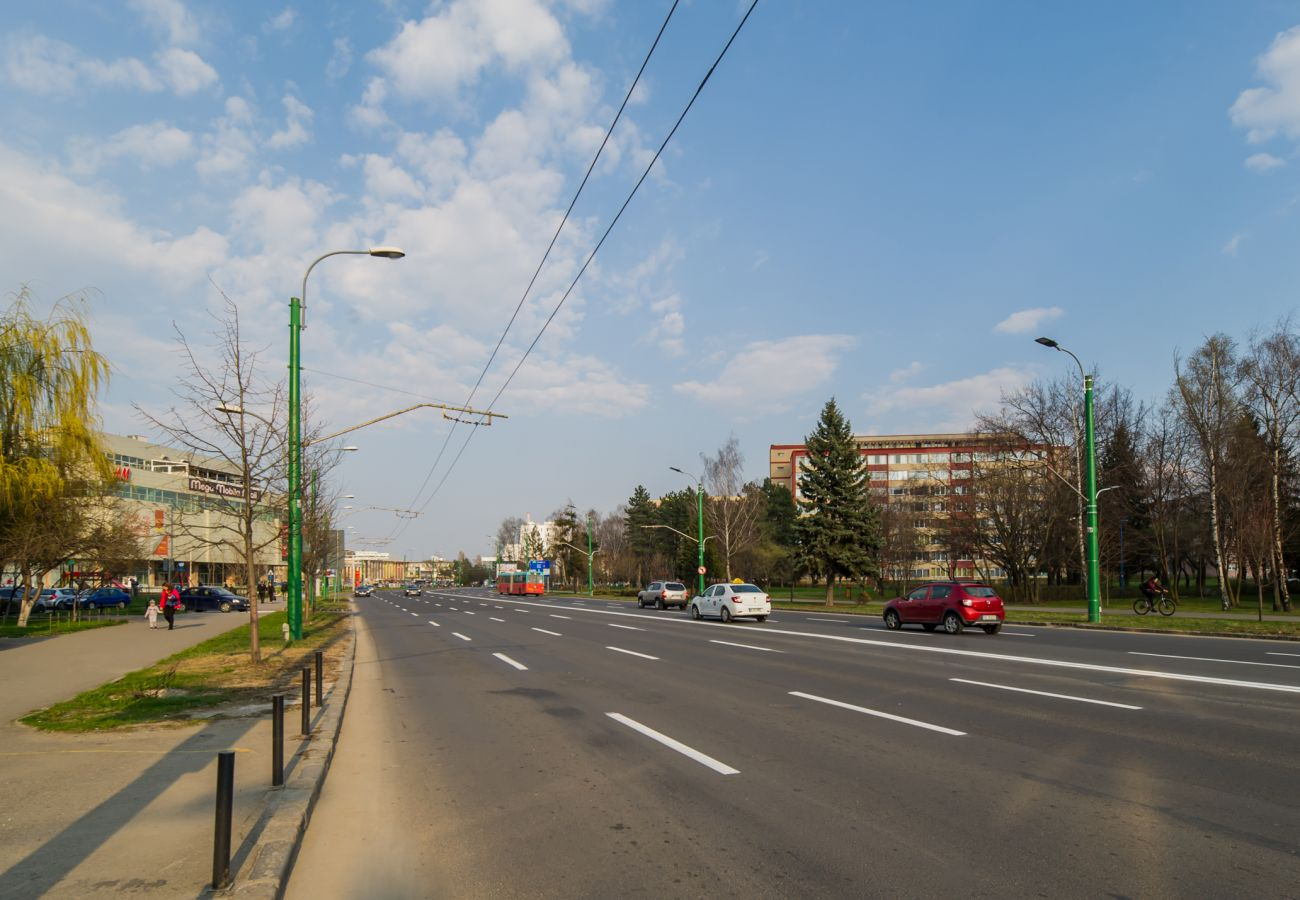 Studio in Brasov - Zen Alpin Studio near train station Brasov