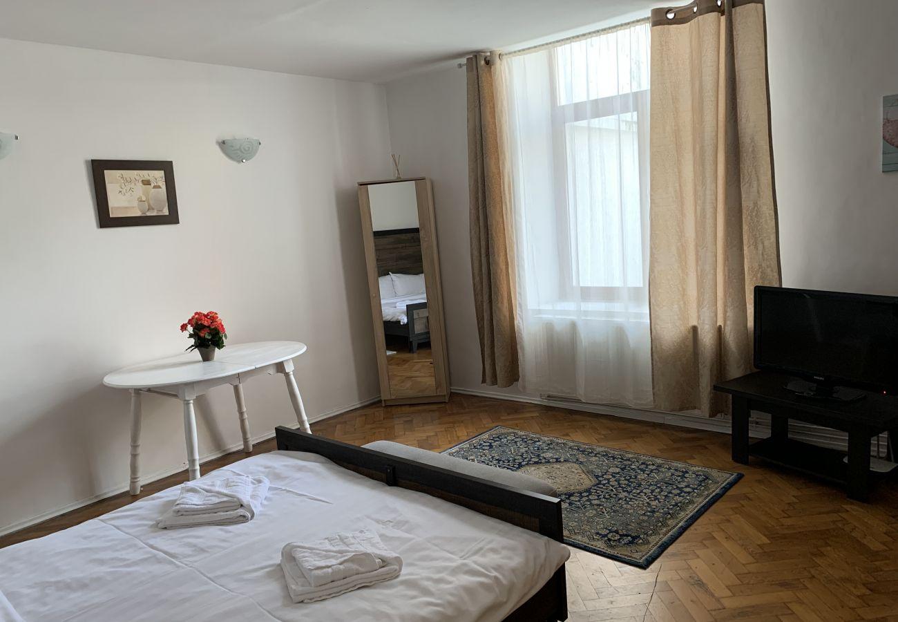 Apartment in Brasov - Apartment Werkstatt Castelului close to the Black Church Brasov