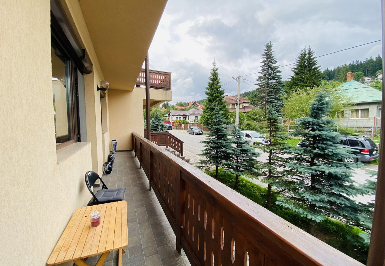 Apartment in Busteni - Lovely Apartment close to the Cantacuzino Castle