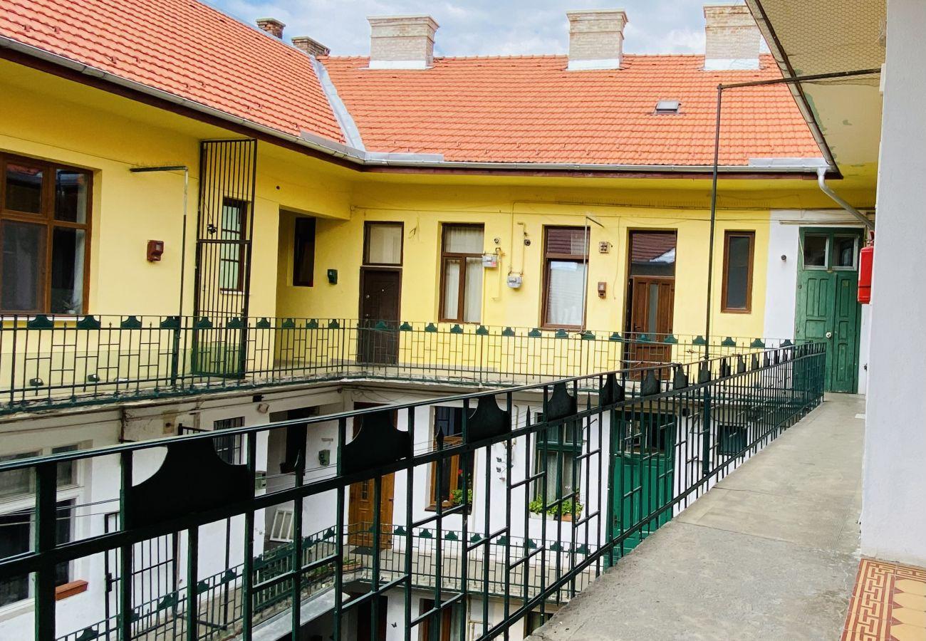 Studio in Cluj Napoca - BluTim Studio  - Stylish Studio next to the Train station