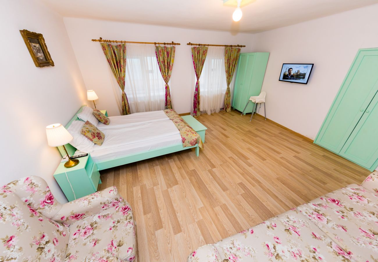 Apartment in Sibiu - One Bedroom Apartment near to the Piata Mica