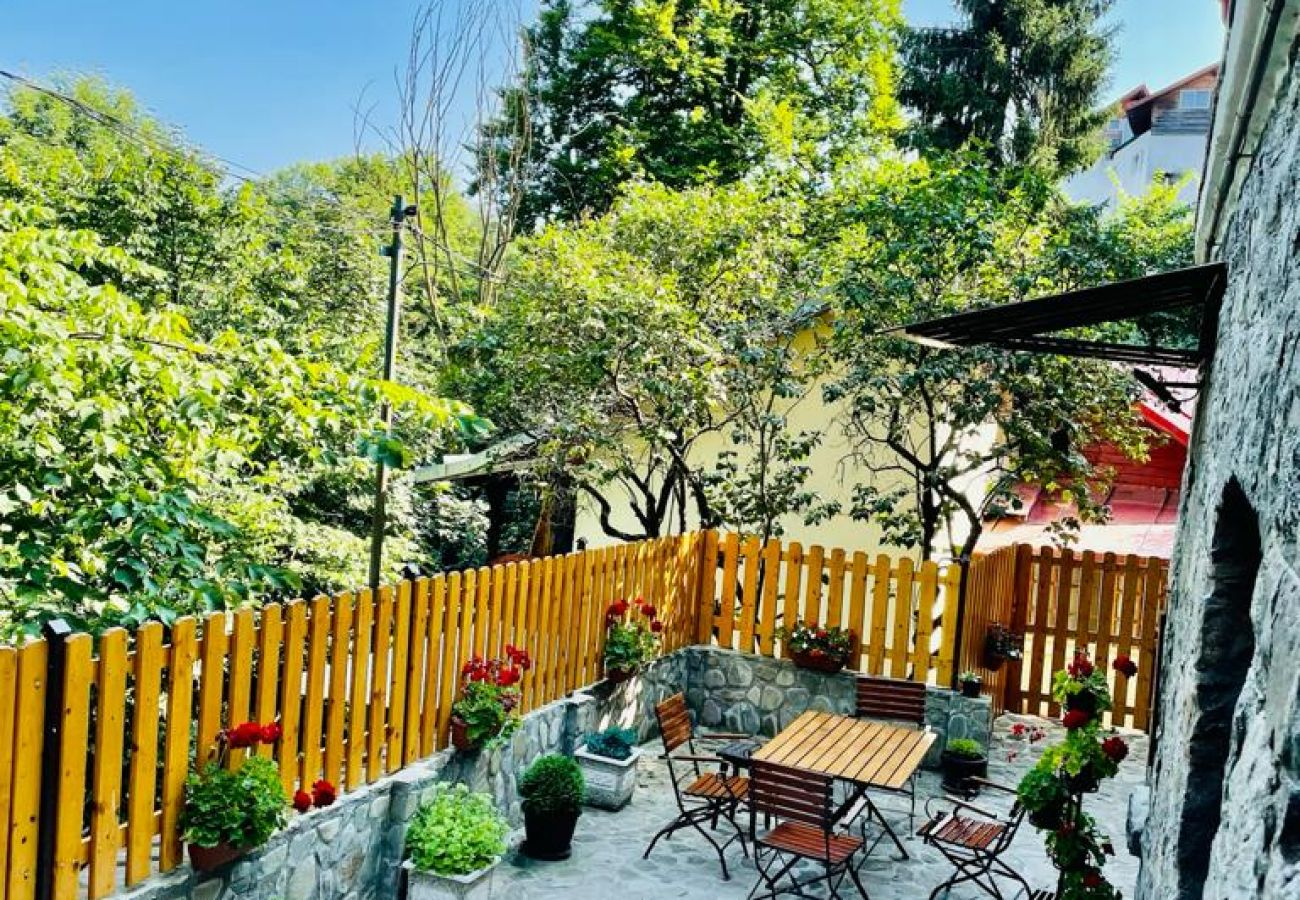 House in Sinaia - Apartment Carol private yard with barbeque and parking