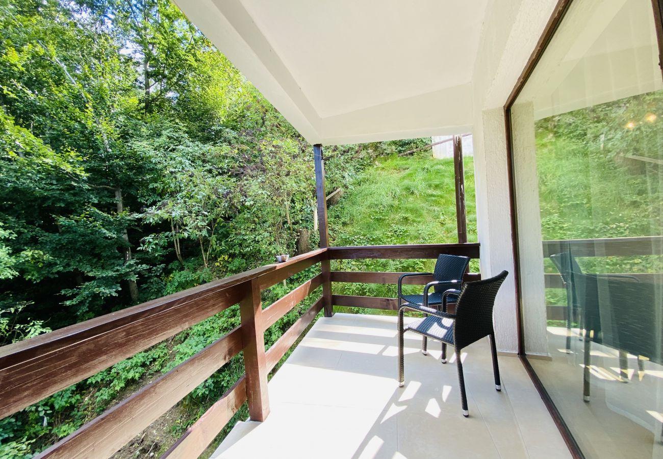 Studio in Predeal - Cozy Studio with Balcony Panoramic Mountain View